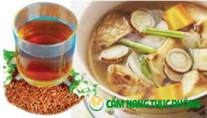 canh duong sinh