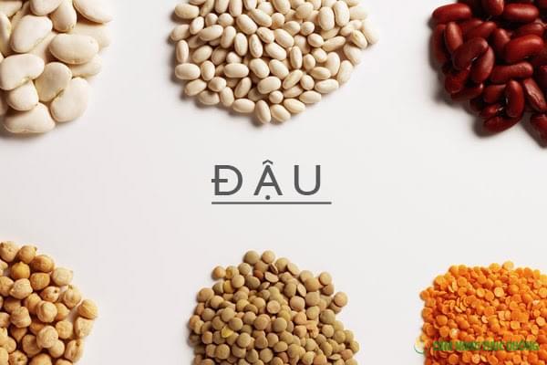 ngũ cốc dinh dưỡng từ các loại đậu